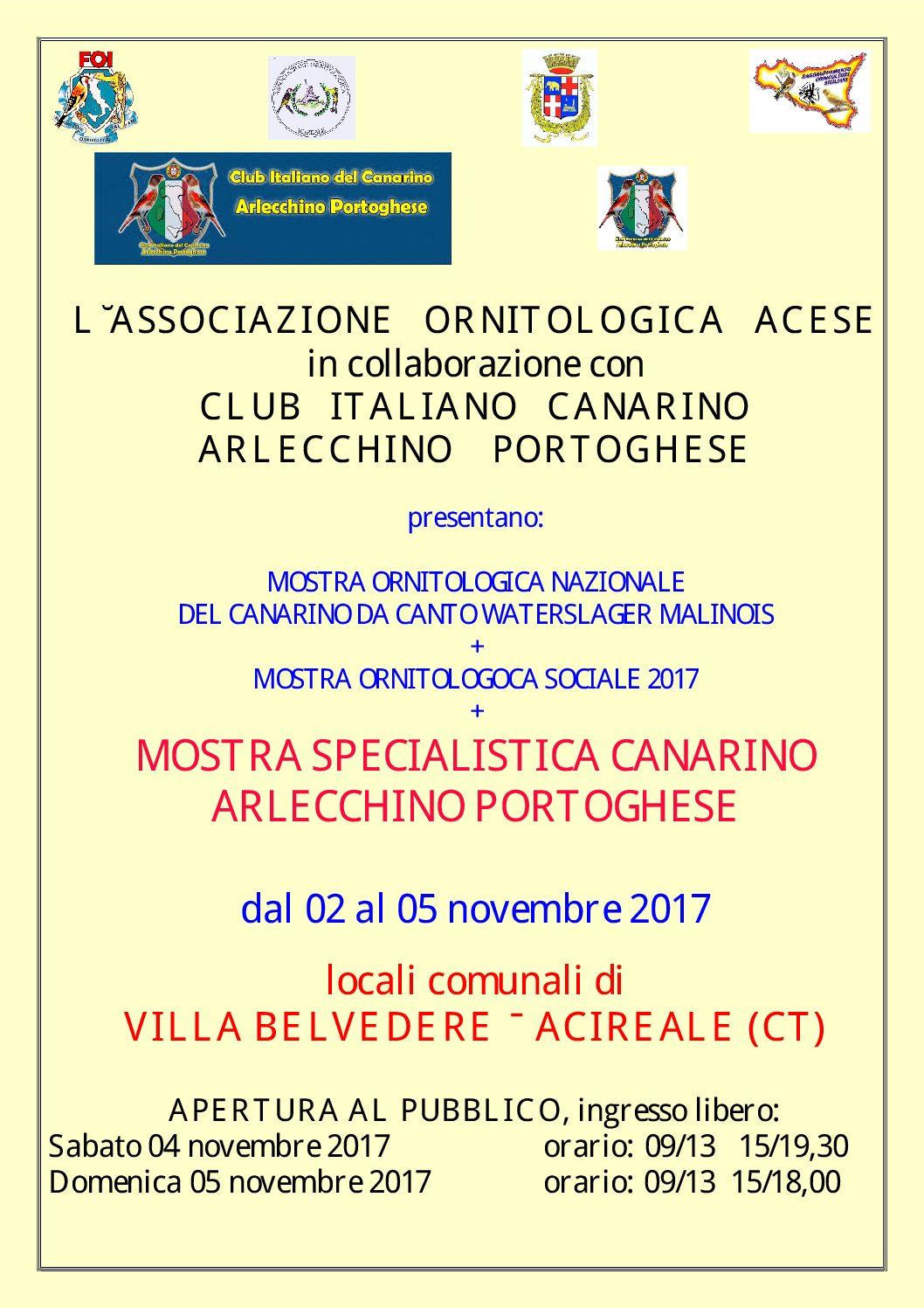 MOSTRA SPECIALISTICA ARLECCHINO PORTOGHESE + Malinois + Mostra Sociale